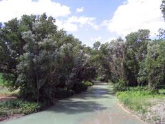 Il fiume cesano